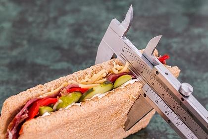 Kalorienzählen Kalorienzähler App